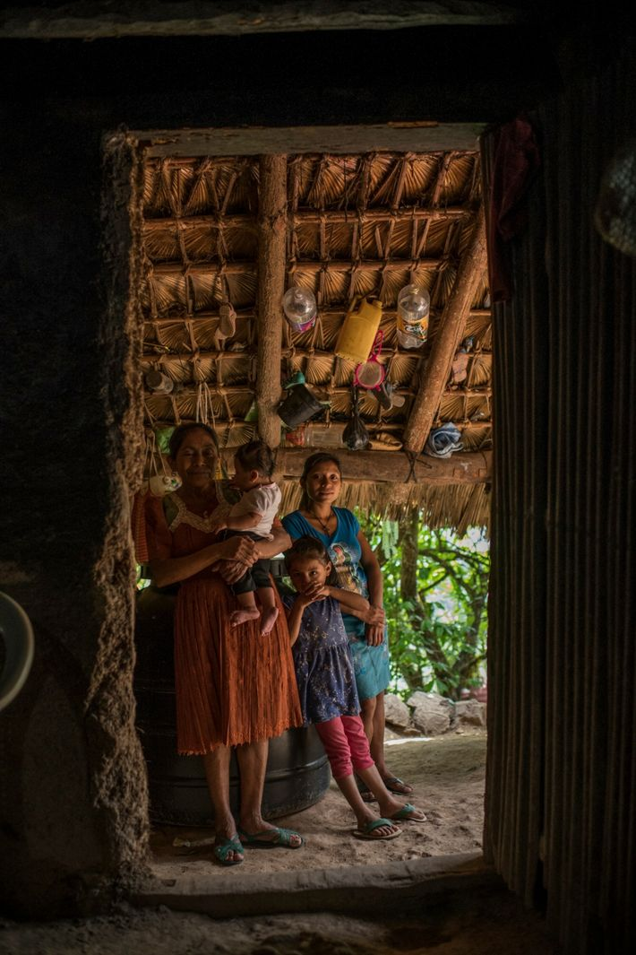 Amelia Recinos Martínez lives in a community called Pitahaya, in the mountains of eastern Guatemala. Her ...