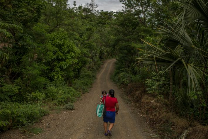 Early one morning this spring, Rosalía García walked with her daughter Floria from their mountainside village ...