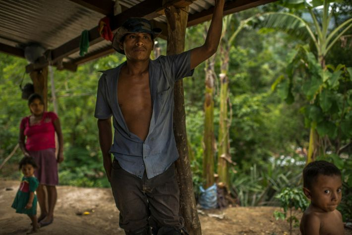 This year, Miguel Interiano and Benigna Hernández had no fertilizer and decided not to plant corn. ...