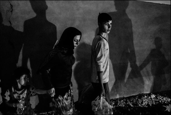 A family of displaced Yezidis from Sinjar fleeing the advance of the Islamic State arrive in ...