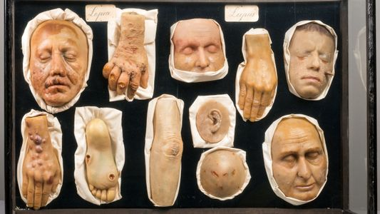 Inside the Creepy Collections of an Oddities Museum
