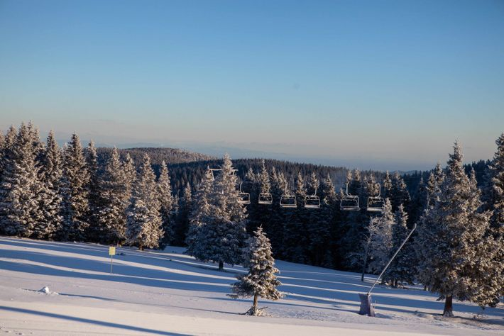 Another bluebird day. The morning sun reveals the results of overnight snowfall in Rogla sky resort.