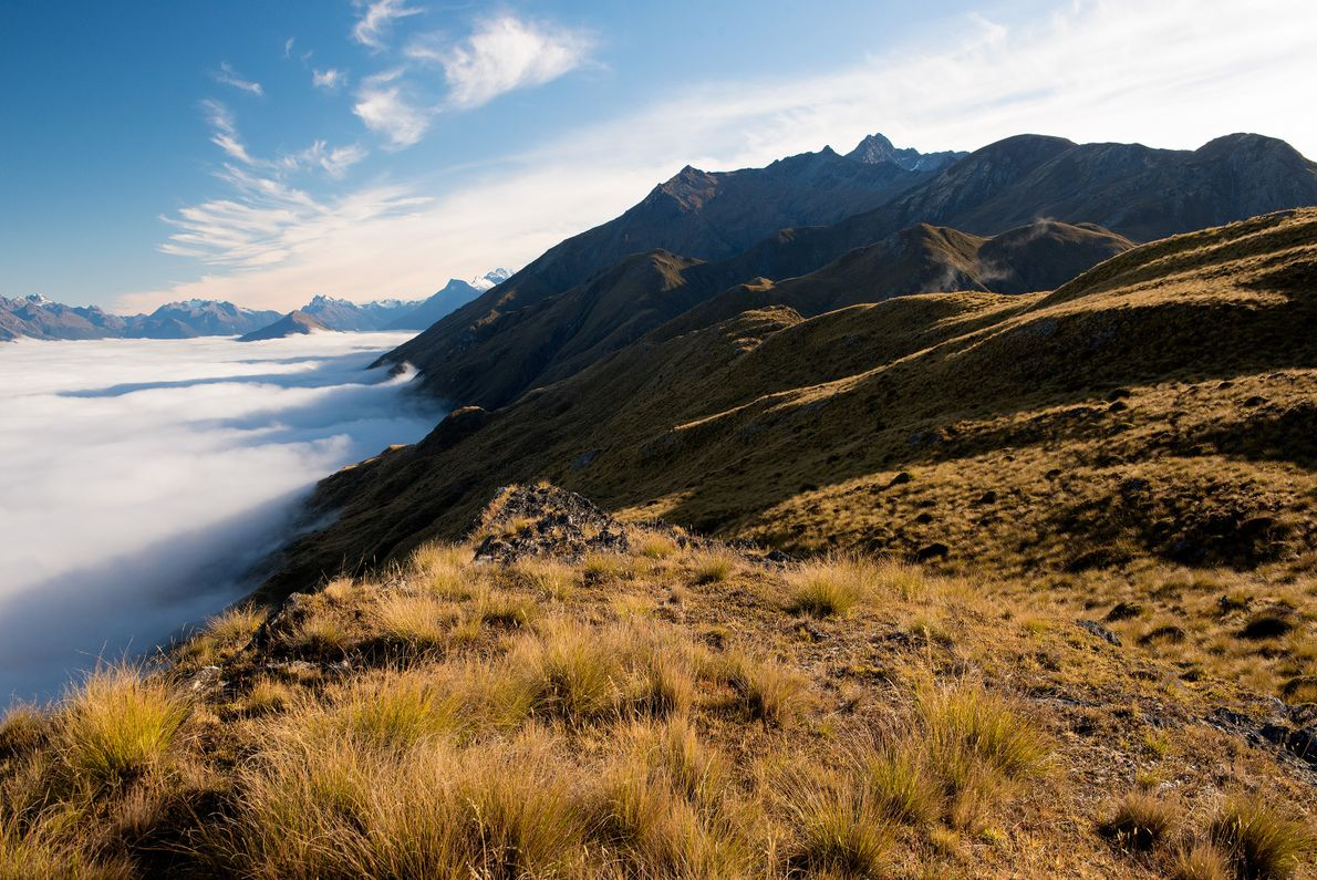 A blanket of clouds covers Lake Wakatipu midmorning on a mountaintop near Mount Creighton outside of …