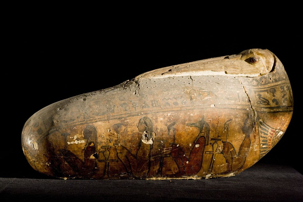 The unusual covering of a votive ibis mummy—a shell of linen and plaster—reproduces the bird's long ...