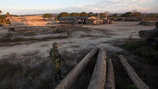 A lone officer from IBAMA keeps vigil at a sawmill in Boa Vista do Pacarana, Rondônia. ...