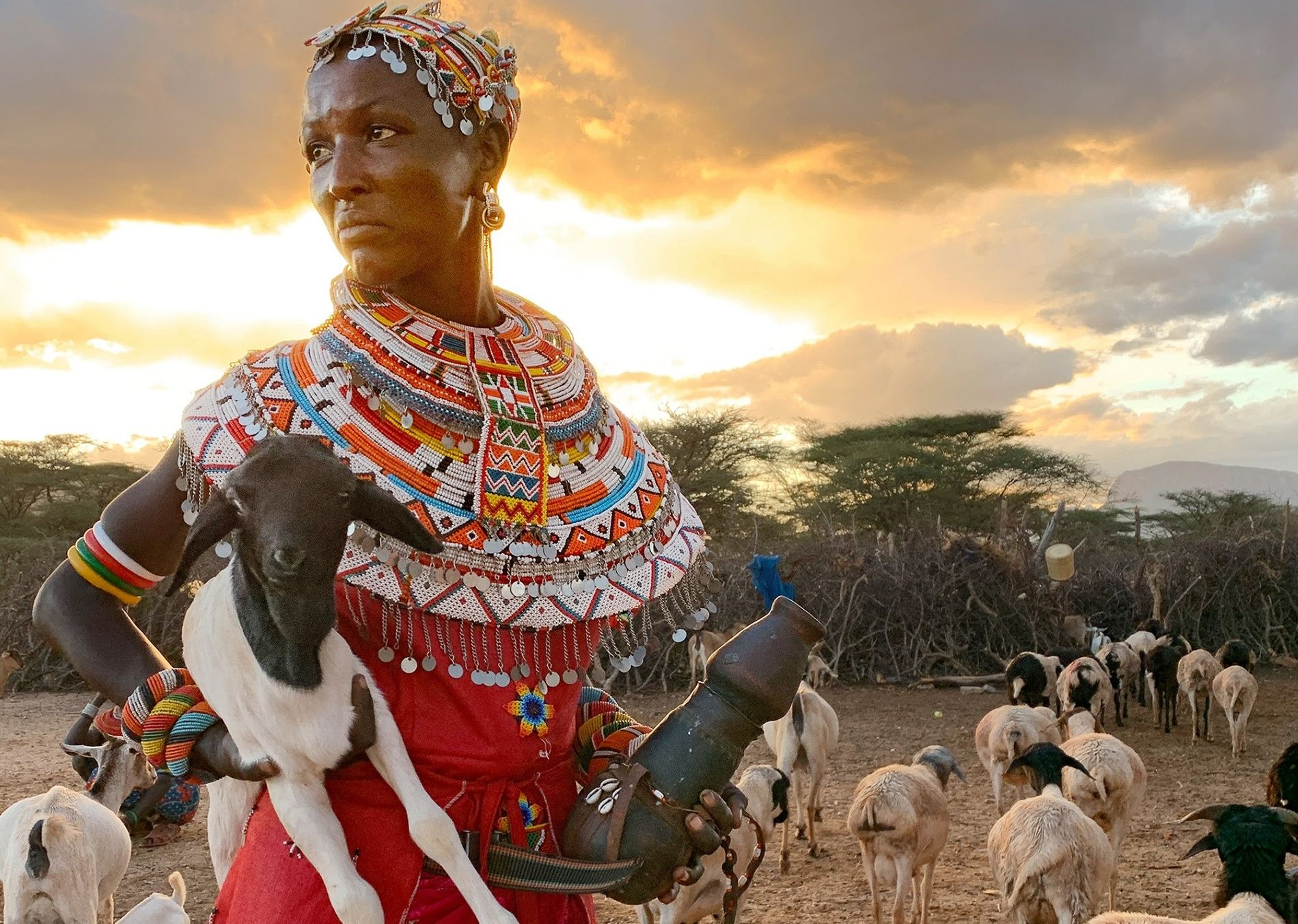 A Nairobi goat herder, in an image captured by Lynn Johnson.
