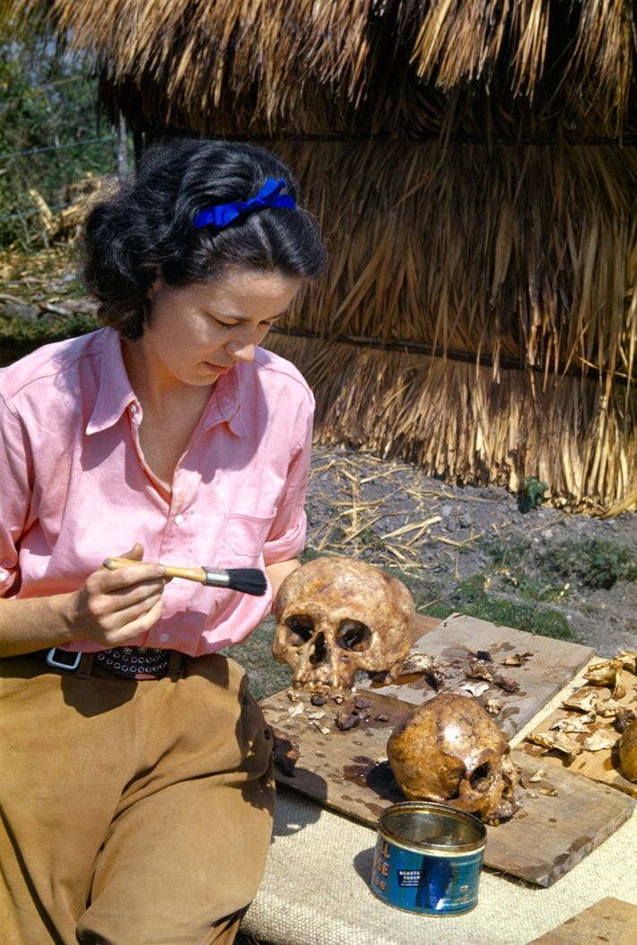 Marion Stirling applies a coat of varnish to protect an ancient skull from crumbling while on ...