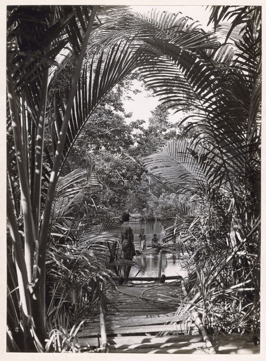 In 1921, Capt. Frank Hurley caught a glimpse of the Opi River in the jungles of ...