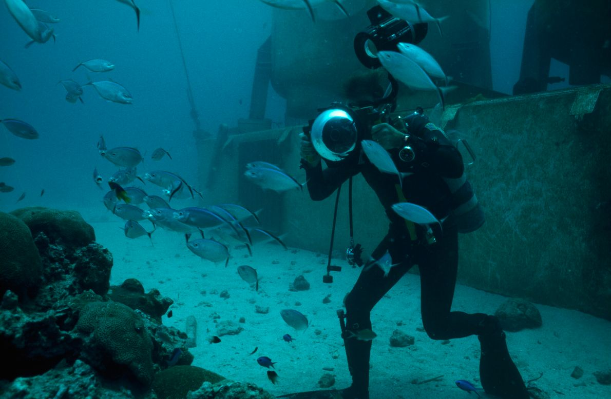 In the Great Lameshur Bay, Virgin Islands, Dr. Richard Chesher uses a camera housed in a ...
