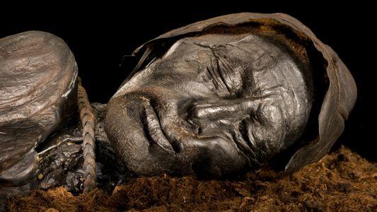 Last meal of sacrificial bog body was surprisingly unsurprising, researchers say