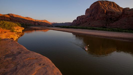 Rivers and lakes are the most degraded ecosystems in the world. Can we save them?