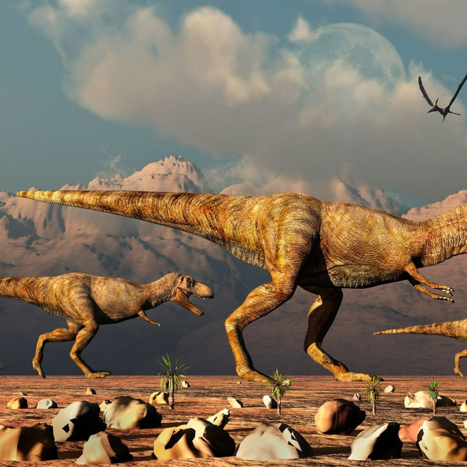 Billions of T. rex likely roamed the Earth, palaeontologists report