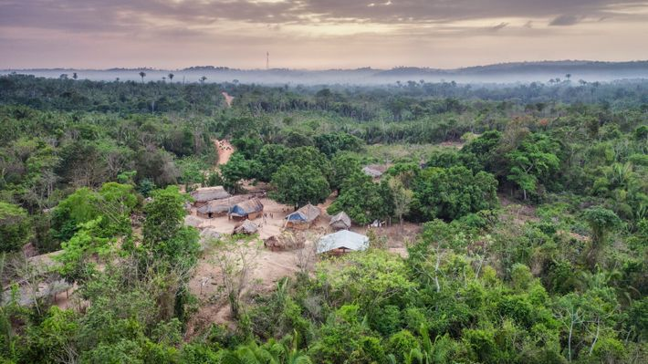 Seen from the air, Posto Awá is one of four settlements founded by FUNAI within three ...