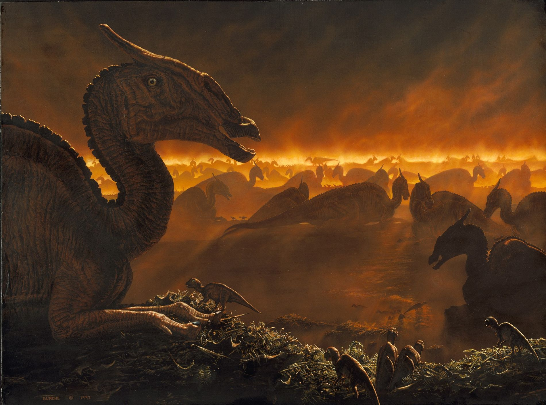Mist-shrouded Mongolian Saurolophus gather at dawn, as seen in a painting. Non-avian dinosaurs died out 66 ...