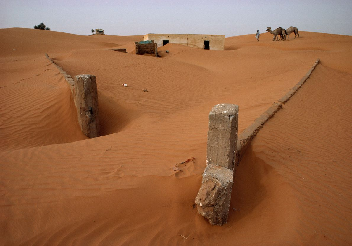 Before the desert sand swallowed them up, the walls around this farm in Mauritania measured four ...
