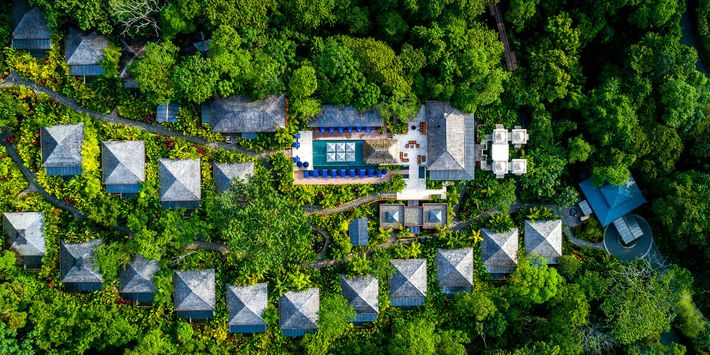 The wooden walkways at Nayara Springs weave past secluded, standalone villas and tropical gardens brimming with ...