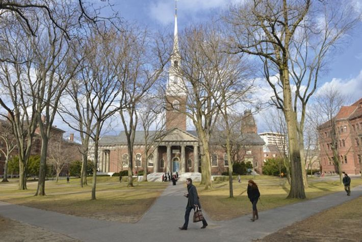 Pedestrians cross the Harvard University campus. Image: Josh Reynolds
