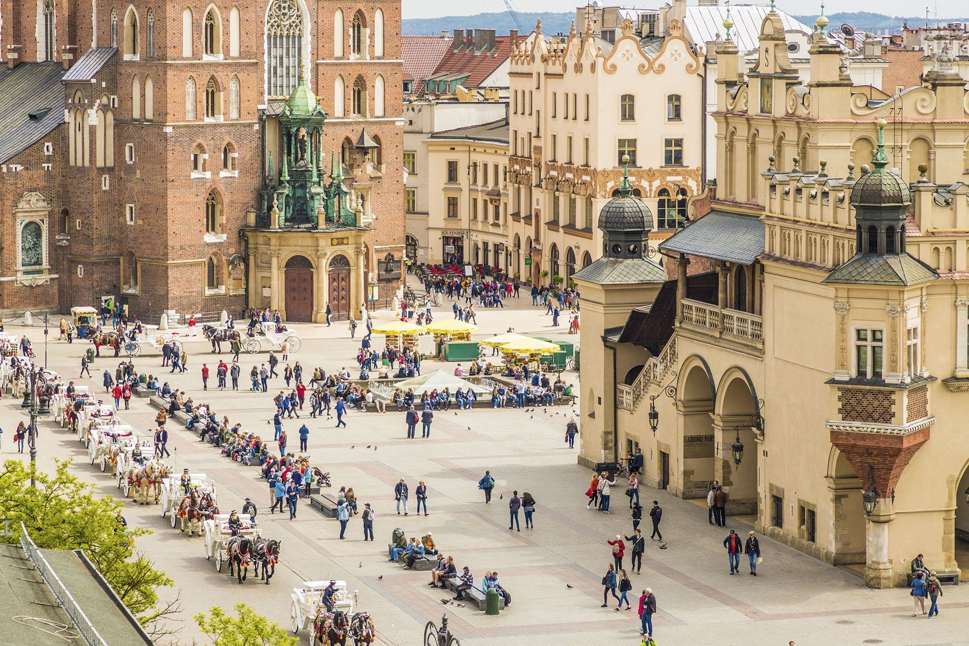 A neighbourhood guide to Krakow | National Geographic