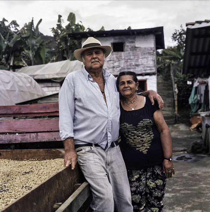 Don Fabio and his wife, Maria Lindelia Jaramillo Atehortua, have dedicated their lives to growing exceptional ...