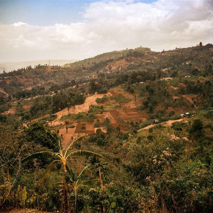 Craftsmanship in Ethiopia