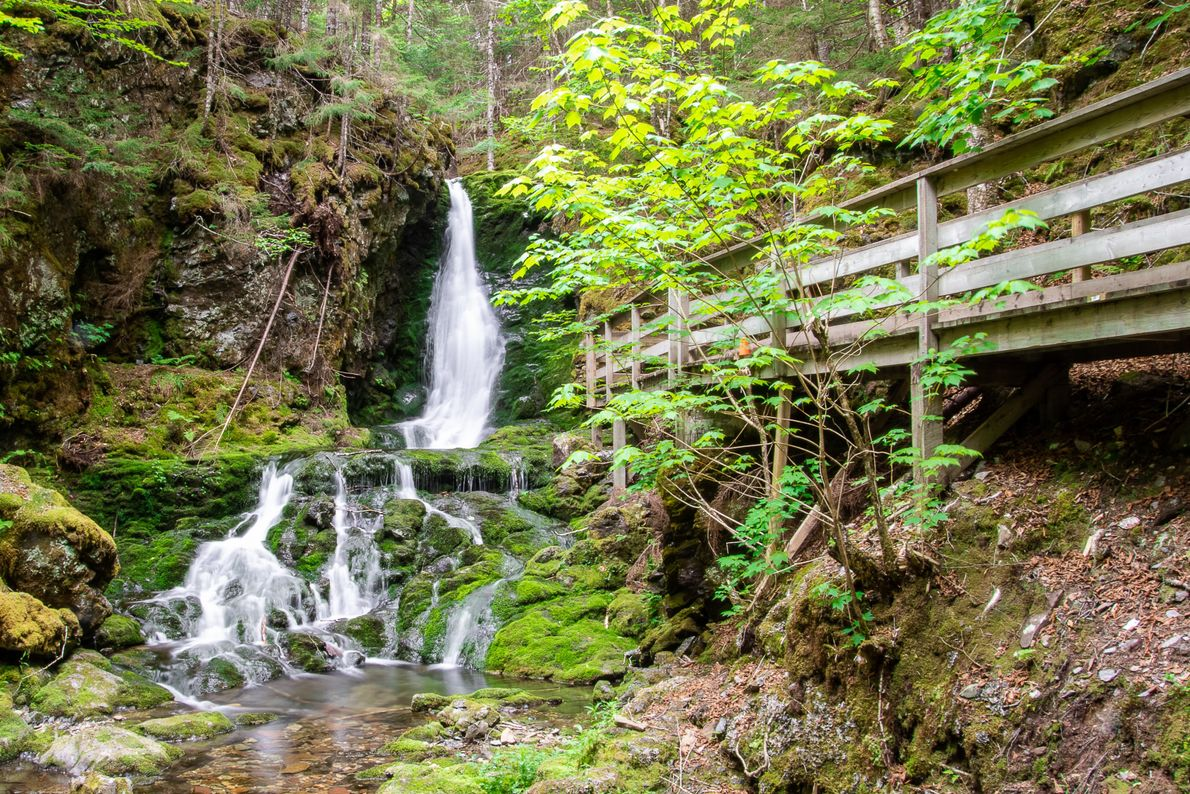 Fundy National Park offers dozens of beautiful hiking trails and waterfalls.