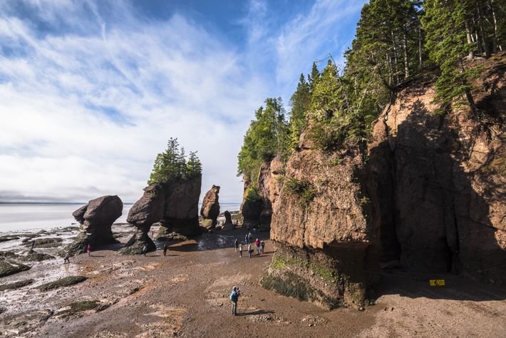 Visitors explore The Hopewell Rocks at low tide.