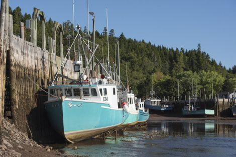 Fishing boats docked at low tide on St. Martins harbour.