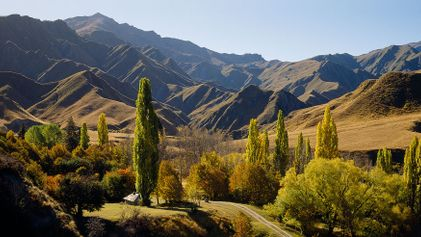 10 Reasons to Visit New Zealand Right Now
