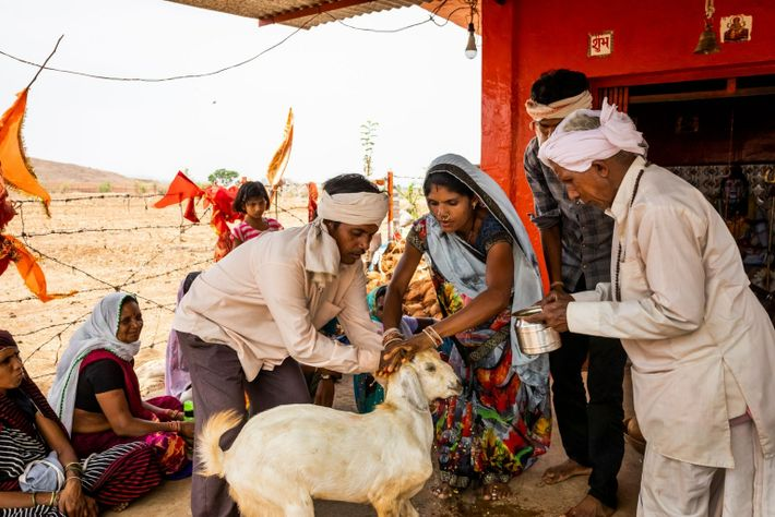 Rural India COVID