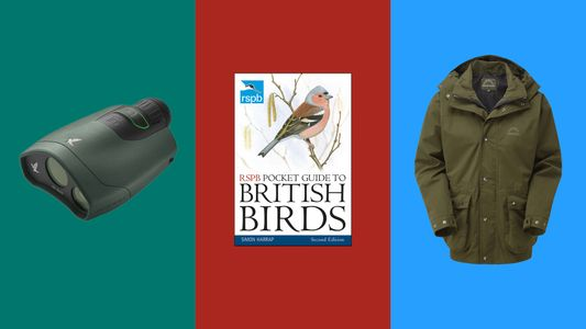 The travel kit list: birdwatching for beginners