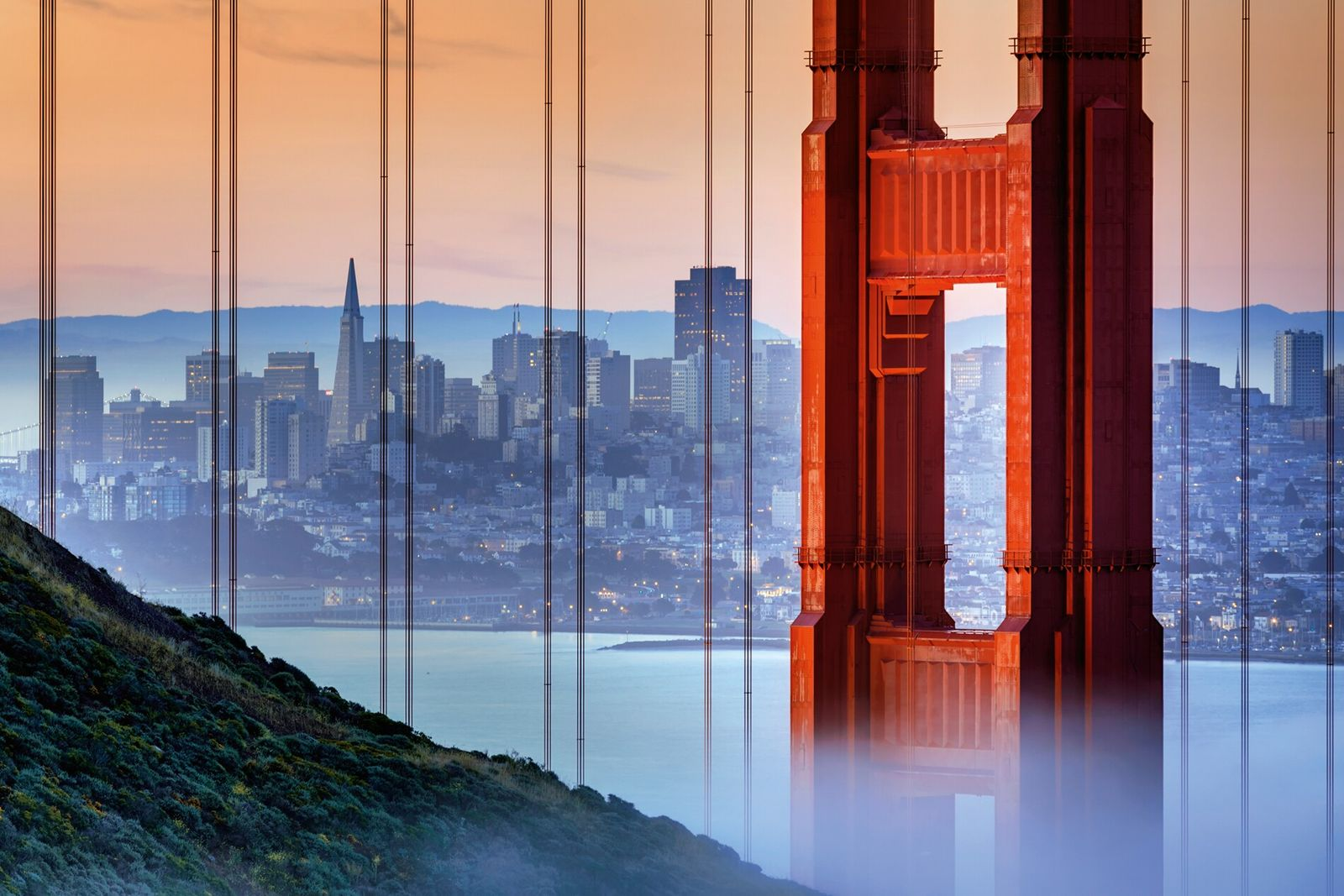 One of the world's most iconic cities, San Francisco is a town of progressives, pioneers, hippies ...