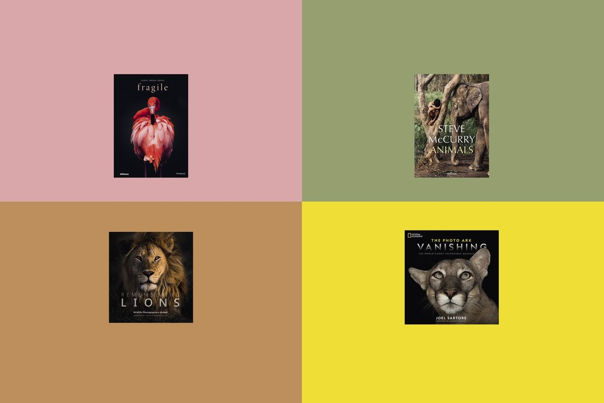 Fantastic beasts and where to read about them: four photobooks for animal-lovers