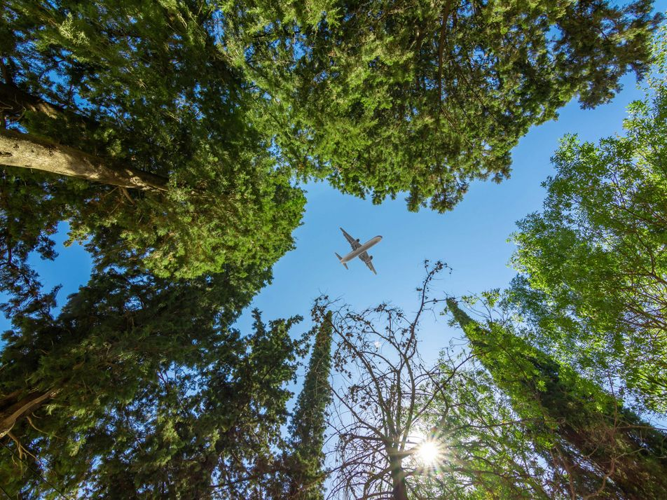 10 ways you can reduce carbon emissions when you travel
