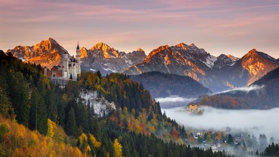 Bavaria is saturated with Alpine forests that pop with colour against snow-dusted mountains.