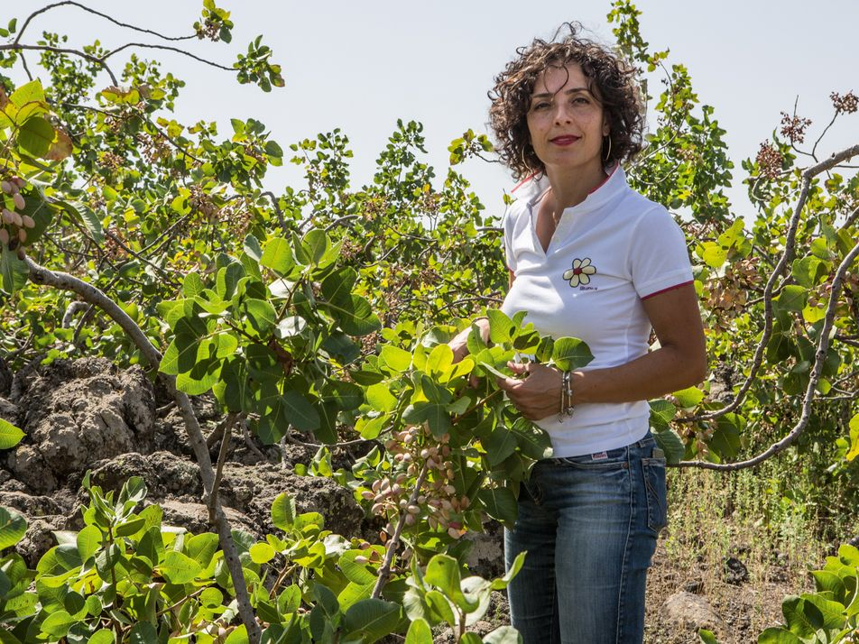 Meet the maker: the woman behind the world's most sought-after pistachios