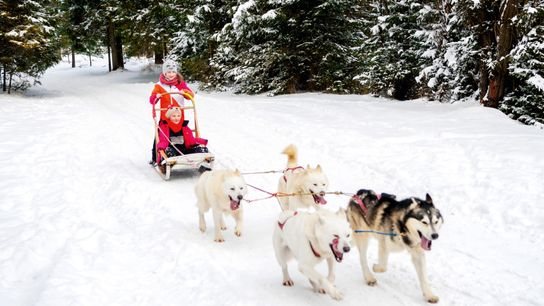 Husky-sledding with children in tow in Finnish Lapland.