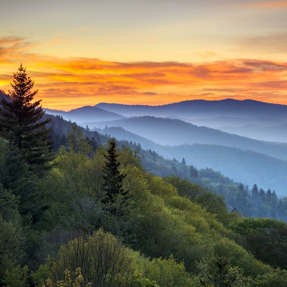 Travel Geeks online: mountains, moonshine and barbecue in North Carolina — 9 March 2021