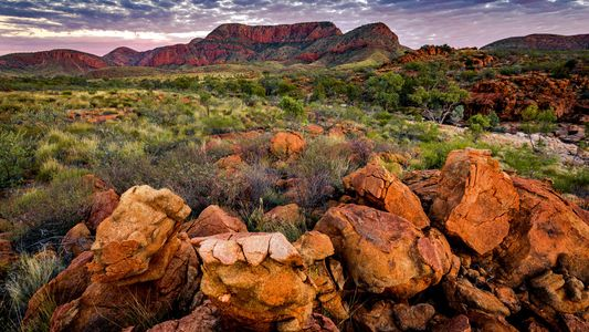 Travel Geeks online: adventure, cities and natural icons in Australia's Northern Territory – 11 May 2021
