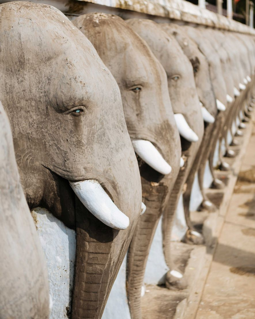 Elephant guardians at the Mahabodhi Temple Complex