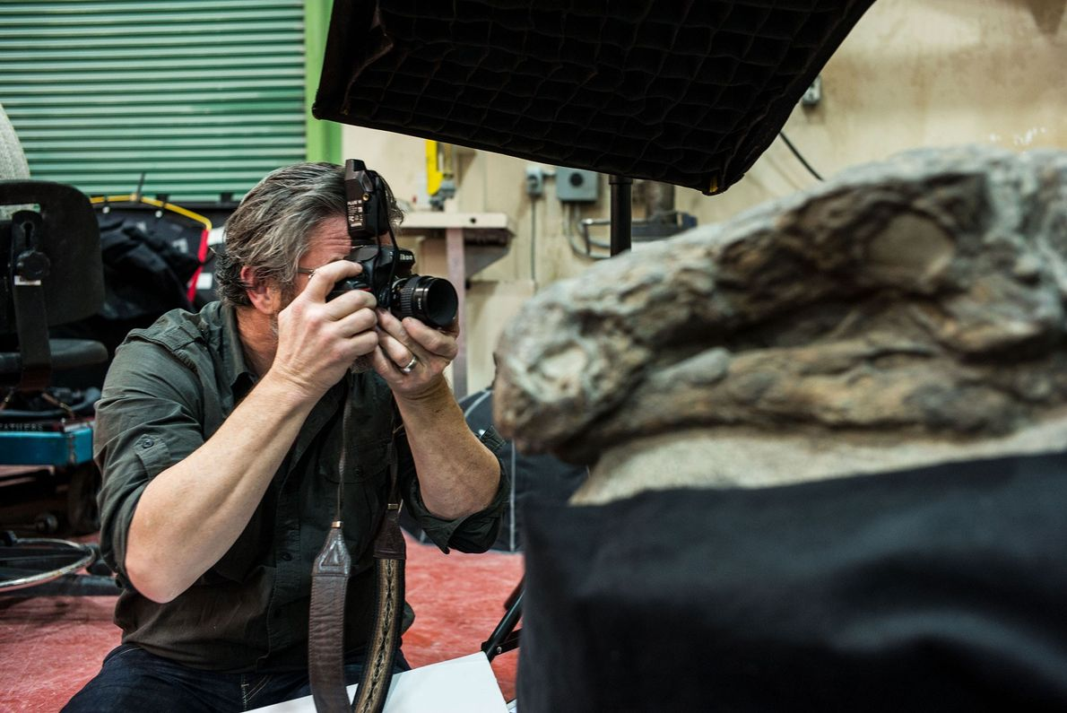 """Clark photographing the nodosaur from the side. """"It looked good from so many different angles,"""" he ..."""