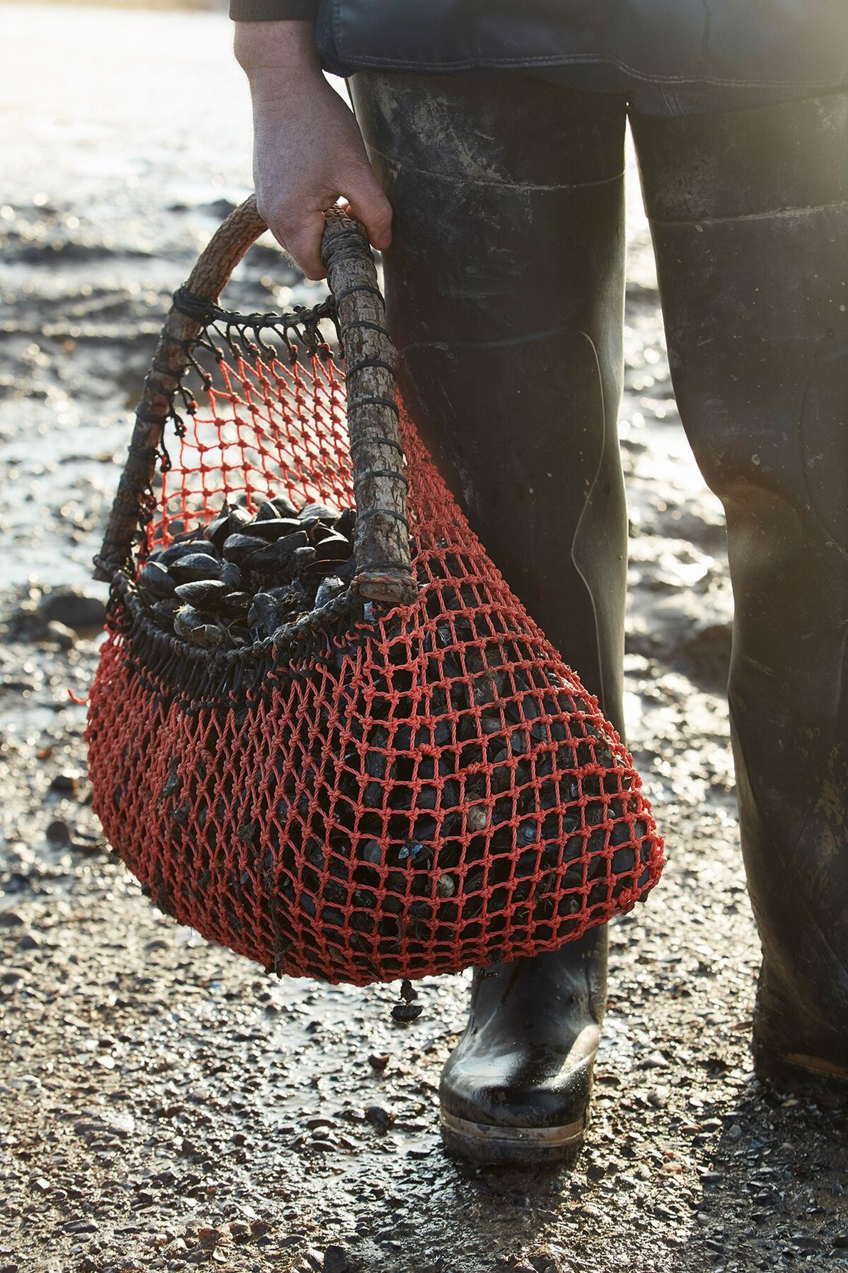 Many of the families farming Brancaster's mussel beds have been doing so for generations, working with ...