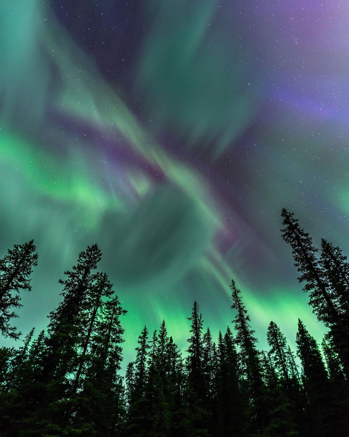 Northern lights soar above the trees near Spirit Island, on Maligne Lake, in Jasper National Park.