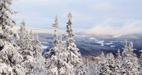 Norway: Trysil all the way
