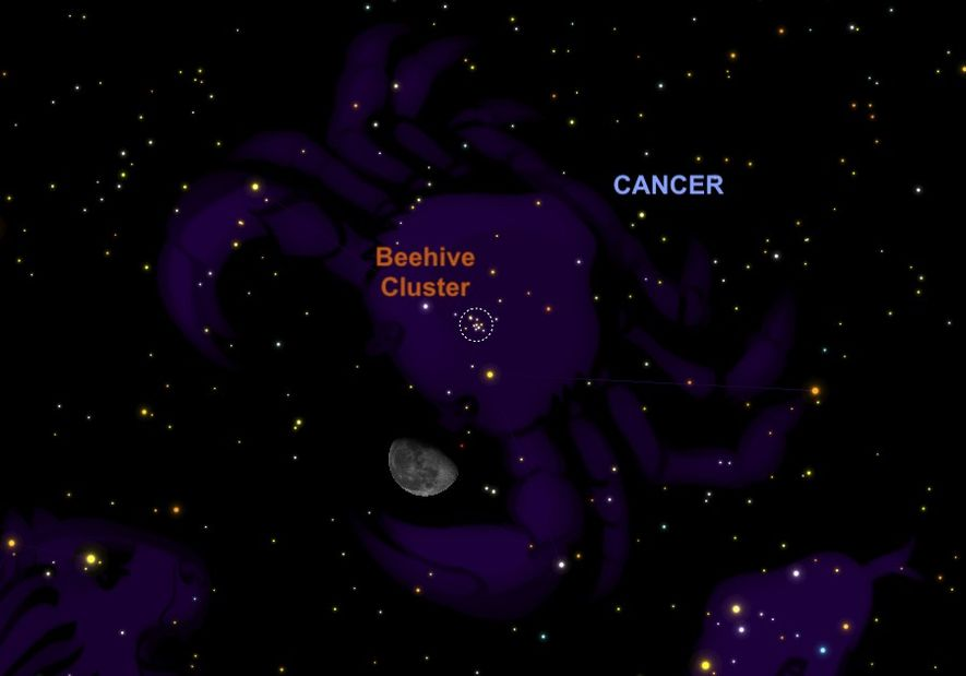 The waning gibbous moon will hang just below the Beehive cluster on November 27.