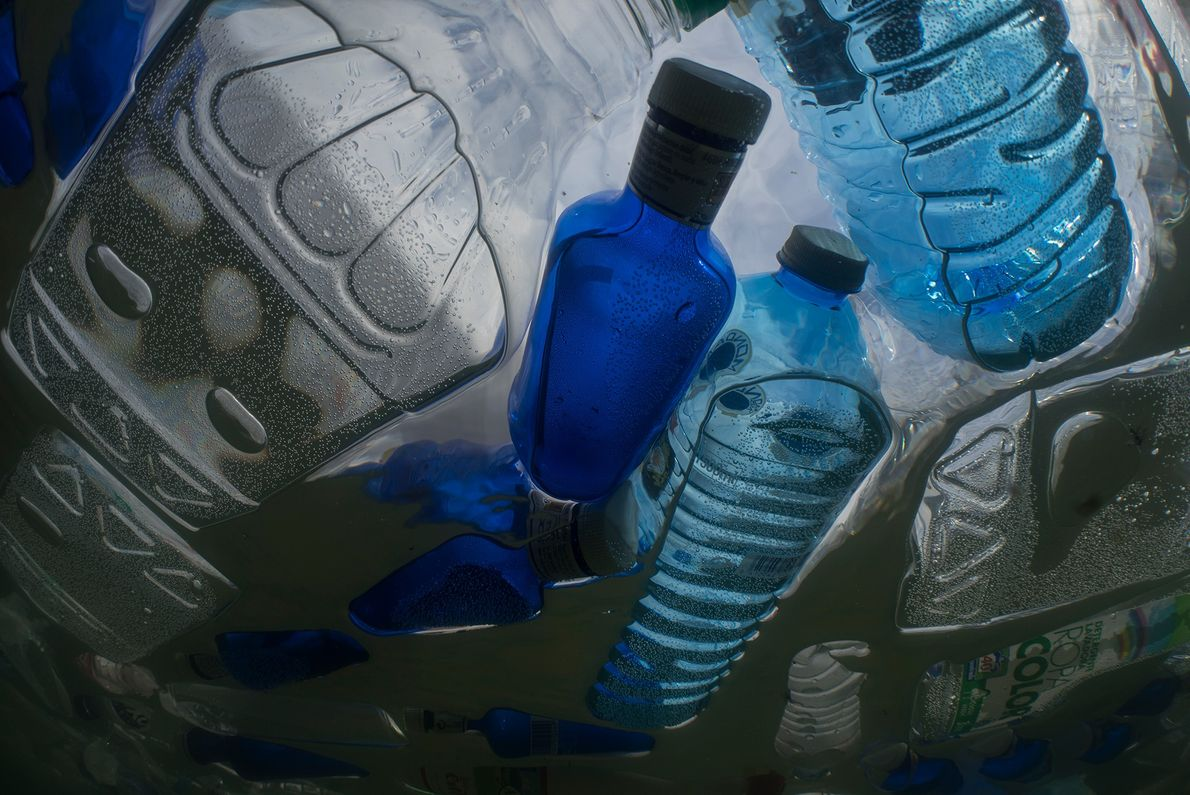 Plastics like these bottles are targeted for cleanup by the Ocean Cleanup's rubbish collection machine, which ...