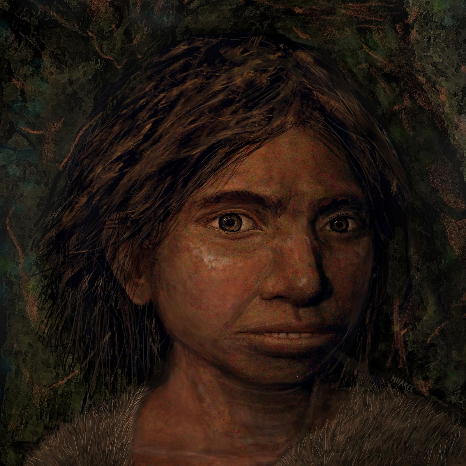 DNA reveals first look at enigmatic human relative