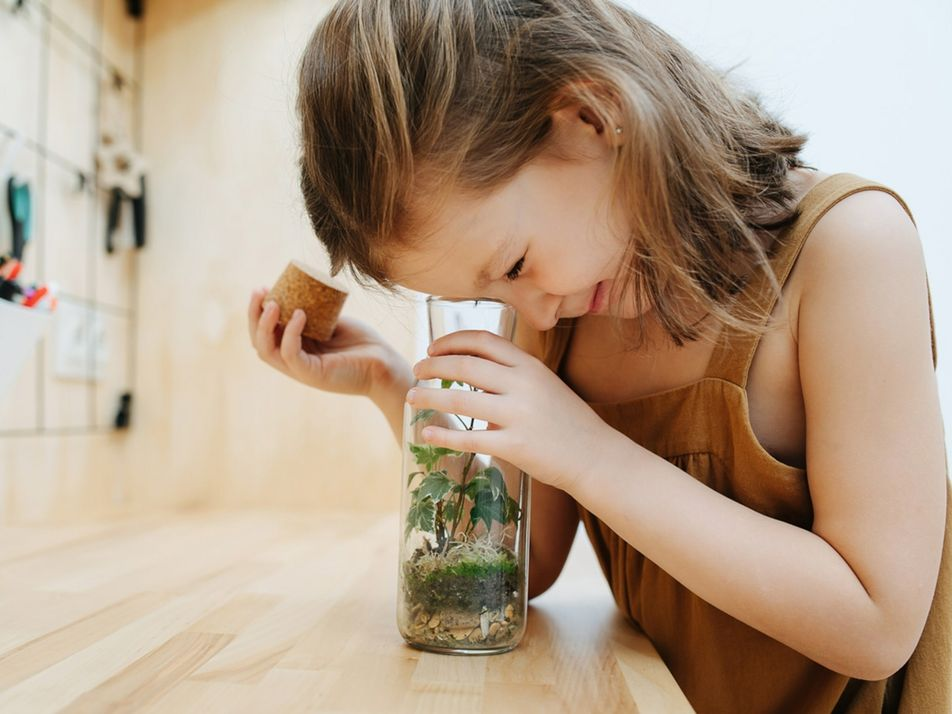 Science experiments that will make your kids' curiosity bloom