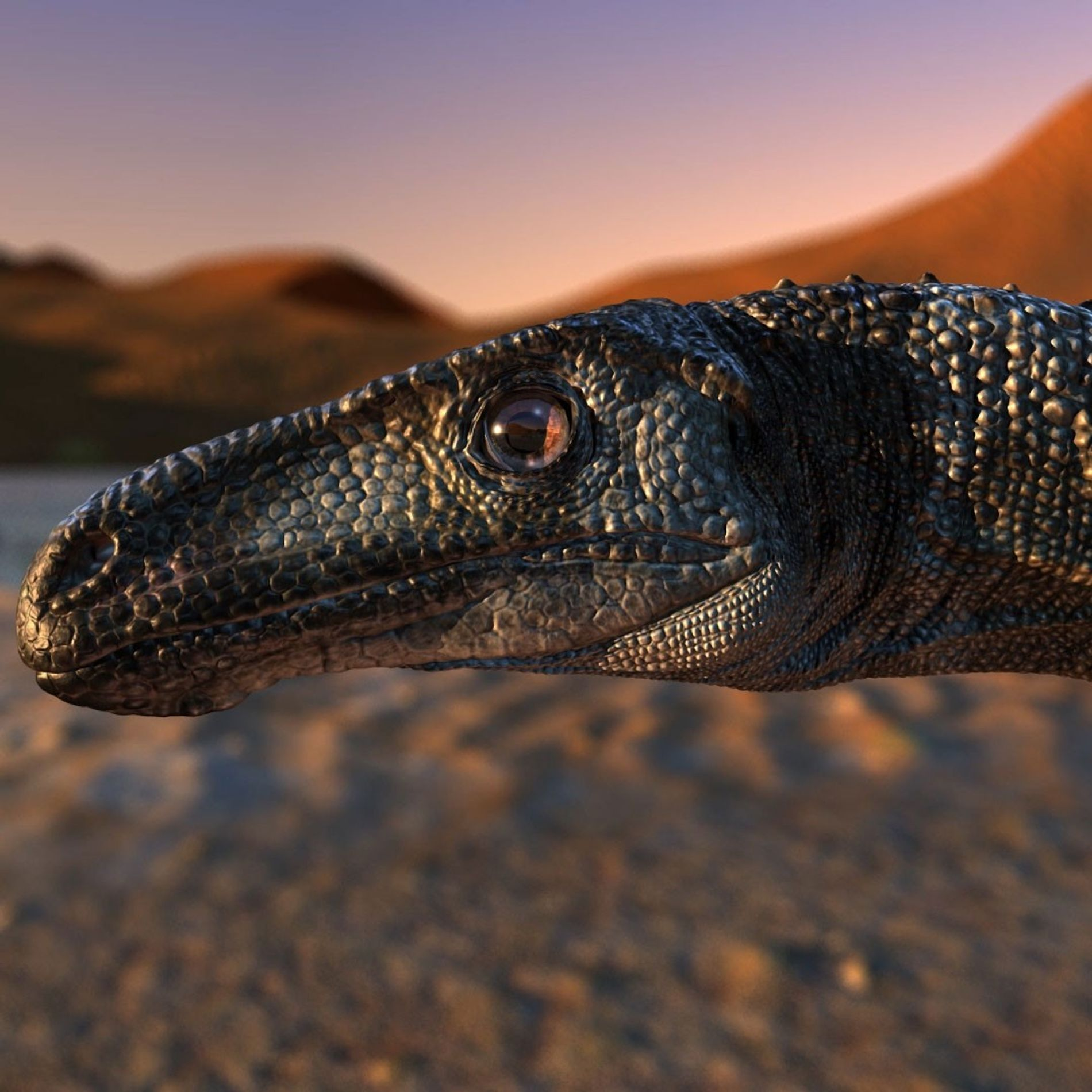 This desert-dwelling dinosaur balanced on single toes
