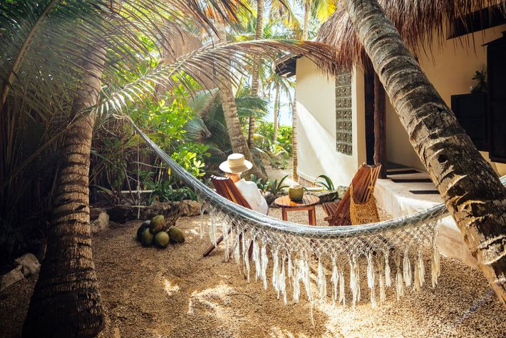 Olas Tulum is a boutique hotel of eight suites, where curved walls circulate air, and energy comes ...