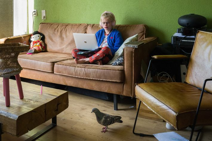 Ollie visits 9-year-old Merel Doest, who's doing her homeschooling on the couch while Dutch schools are ...